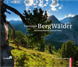 BergWälder_Cover