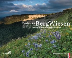 CoverBergwiesen